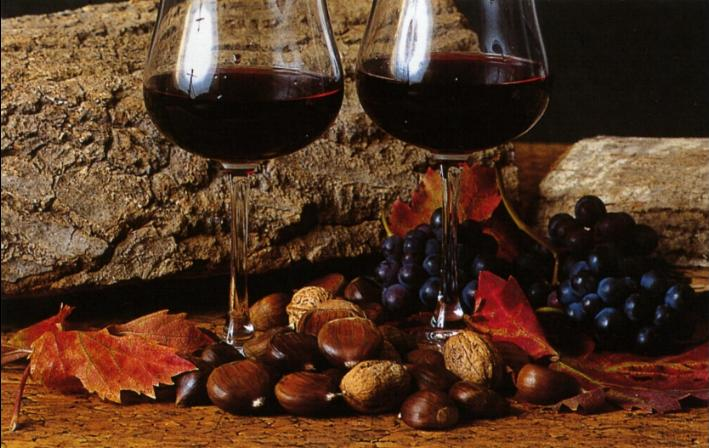 produzione vino novello