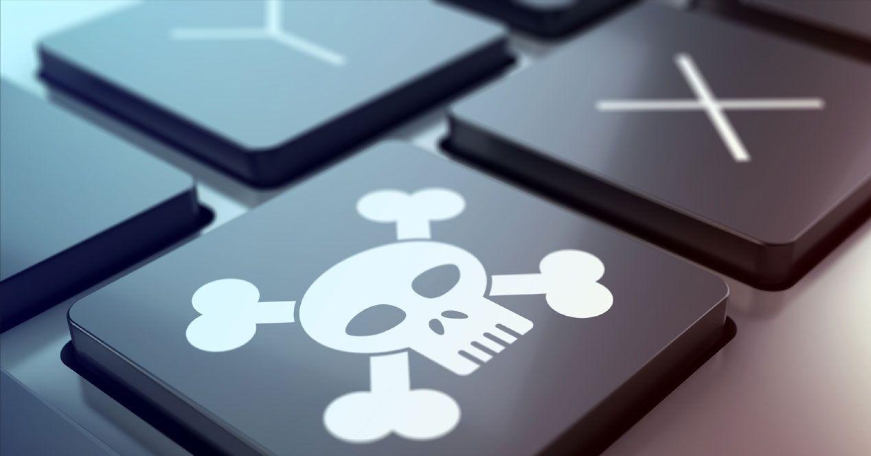 pirateria operazione guardia finanza di roma