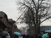 Meta Magazine ad Auschwitz con gli studenti di Albano