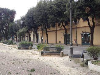 viale roma alberi patto popolare velletri