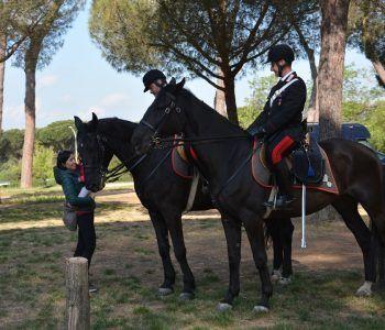 carabinieri a cavallo castelli romani