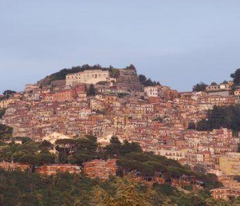 Rocca di Papa bosco