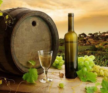 kit per ottenere vino frascati