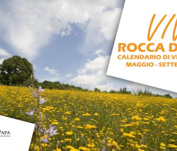 boschi Rocca