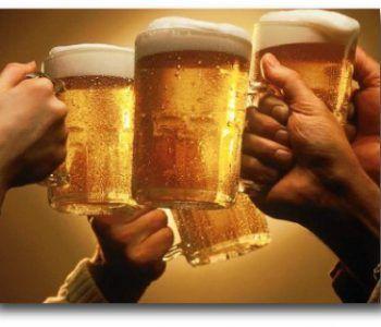festa birra velletri