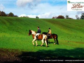 Rocca Priora cavallo
