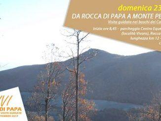 Rocca bosco