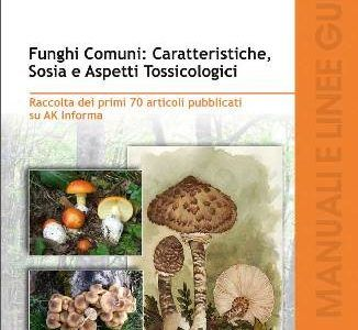 funghi guida