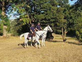 carabinieri a cavallo rocca di papa