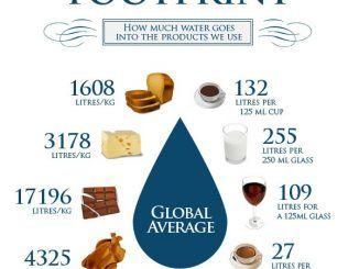 cibo acqua