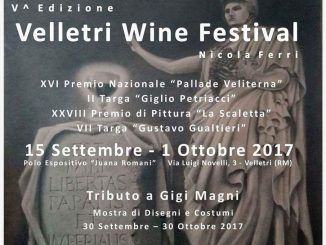 Wine Velletri
