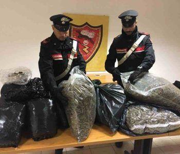 frascati droga carabinieri