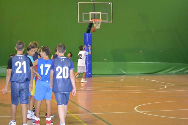 ssd colonna basket