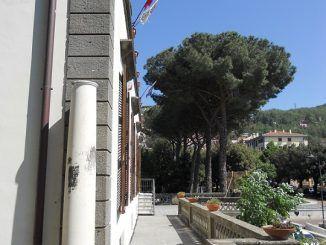 pini Villa pericolanti Ente