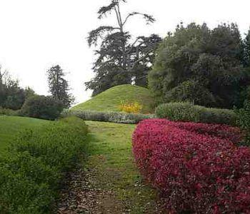 Oggi, 19 maggio, riaperto il Parco Sforza Cesarini. Ingresso gratuito per i residenti, la prima domenica del mese
