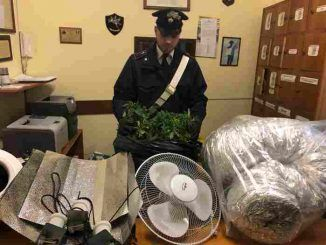 Coniugi detenevano Marijuana in casa, arrestati dai Carabinieri di Colonna