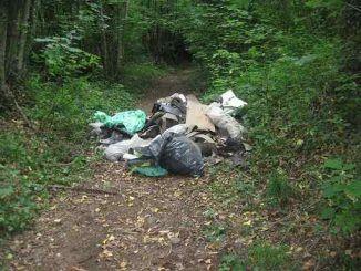 Cammino Naturale dei Parchi, trovati rifiuti abbandonati nel bosco di Rocca di Papa