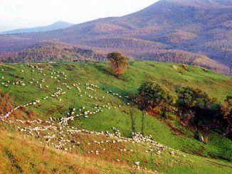"""Al lavoro per il nuovo calendario di """"Cose Mai Viste 2019"""" del Parco Regionale Castelli Romani"""