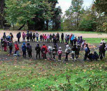 Proposta di educazione ambientale al Parco regionale dei Castelli Romani per il nuovo anno scolastico, 2018-2019