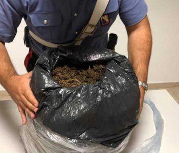 Rocca Cencia, Carabinieri scoprono casa dello spaccio di Marijuana. In manette un pusher, sequestrati 10 kg di roba