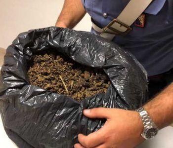 """Scoperta """"casa dello spaccio"""" di marijuana a Rocca Cencia. Arrestato un pusher e sequestrati 10 kg di erba"""