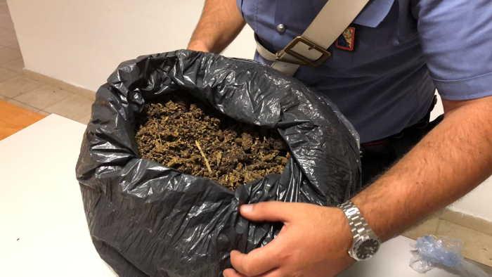 Rocca Cencia, Carabinieri scoprono casa dello spaccio di Marijuana..