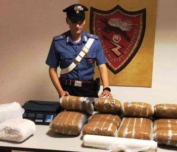 Tor Bella Monaca e Tor Vergata, continuano i bliz antidroga dei carabinieri. Arrestate sei persone, sequestrati 18 kg di Marijuana