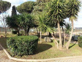interventi sul verde a Parco Falcone