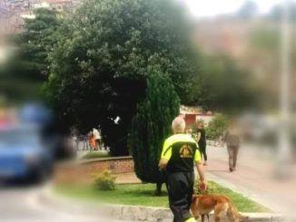 uomo della protezione civile cammina con cane